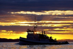 A stunning sunset over the serene waters off Northern Vancouver Island in British Columbia as a commercial fishing boat heads home for the day.